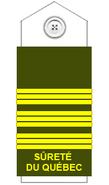 Sq-rank-insp