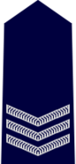 NSWPol-sergeant