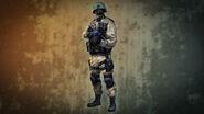 Iraqi Security