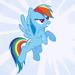Rainbow Dash (FIM).png