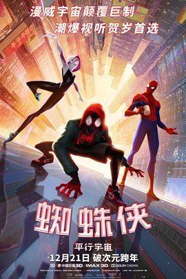 蜘蛛侠:平行宇宙.jpg