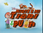 My Friends Tigger & Pooh - title card (Albanian).png