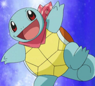 Squirtle (Team Go-Getters)