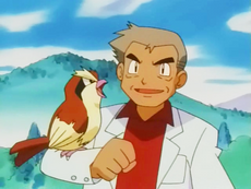 Pidgey (Professor Oak).png