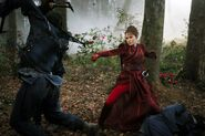 Raven's Feather, Phoenix Blood