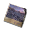 Ico GearItem PostCard RV Pensive-resources.assets-766