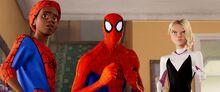 Spider-Gang.jpg