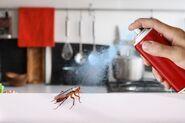 Deadroach