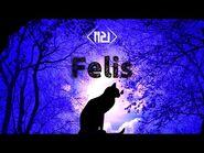 M2U - Felis 『Official Track』 -Arcaea-