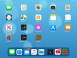 IPad mini 4 home screen