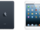 Ultimate iPad Expert/iPad mini!