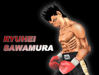 Wii - Rev - Sawamura - 02