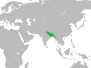 Sultanate of Bengal.png