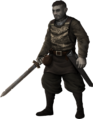 Swordsman pic