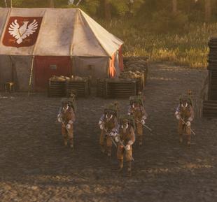 Polonia Flamethrowers ingame