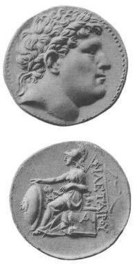 Philetaerus.jpg