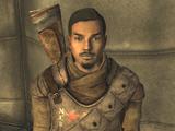 Sergente Bitter-Root