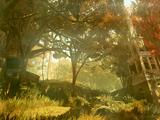 Palude (Fallout 76)