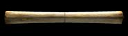 FW-1605120620