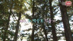 PK-YE-Ep.03.jpg