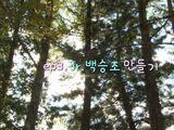 Creating Beak Seung-jo Jr