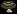 Ogre Toe Mushroom