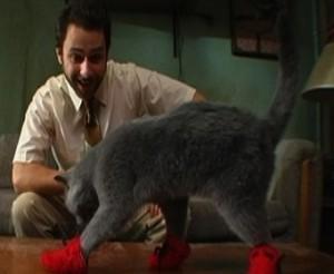 Kitten-mittens2.jpg