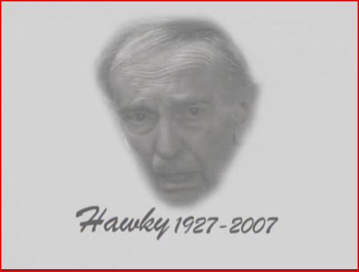 Hawky.jpg