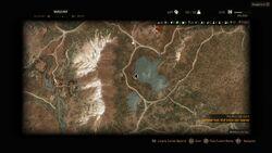 Tw3 map herbalist ard skellige near lake
