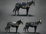 Equipaggiamento per il cavallo
