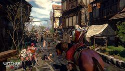 Witcher3 en screenshot the witcher 3 wild hunt screenshot 35 1920x1080 1425653254.jpg