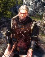 Tw2 screenshot armor armorofbanard