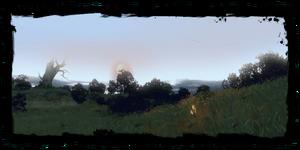 Il Bosco dei Druidi nel diario
