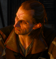 The witcher 3 cyprian