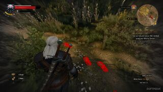 The-Witcher-3-Diary-Witcher-Contracts-Are-Quite-Fun-482236-2.jpg