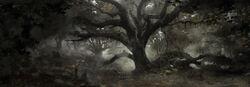 Tw3 concept art dark forest.jpg