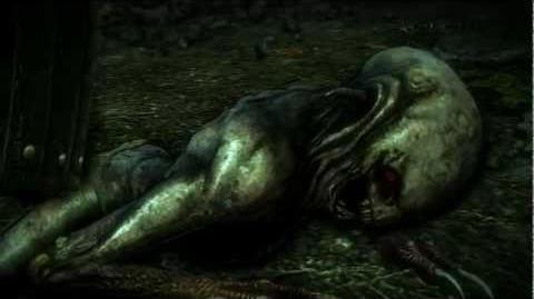 Iorveth meets Kingslayer (The Witcher 2) Full HD