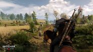 Witcher3 en screenshot the witcher 3 wild hunt screenshot 34 1920x1080 1425653254