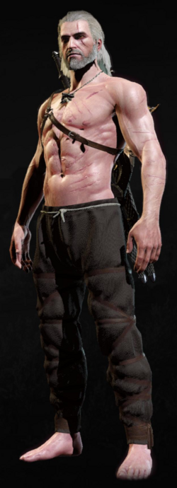 Tw3 armor cavalry trousers.png