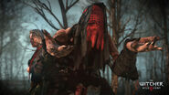 The Witcher 3 Wild Hunt-One of the Crones