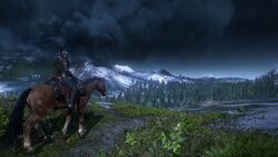 Tw3 horse ride 2.jpg