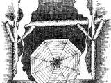 Culto del Ragno Leonino