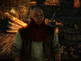 Mercanti in The Witcher 2