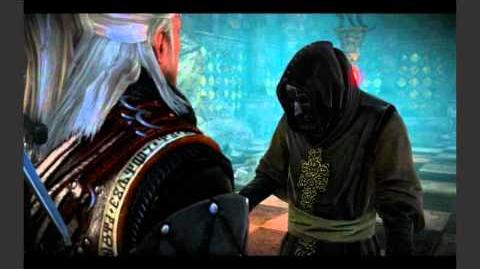 The Witcher 2 - From a Bygone Era Solution