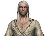 Armature (The Witcher)