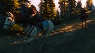 Tw3 ciri horse racing baron