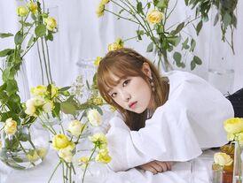 COLORIZ Photobook Rose Ver Yena 2