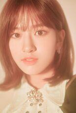COLORIZ Photobook Rose Ver Yujin 4