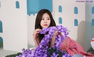 Oneiric Diary Behind Minju