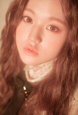 COLORIZ Photobook Rose Ver Wonyoung 3